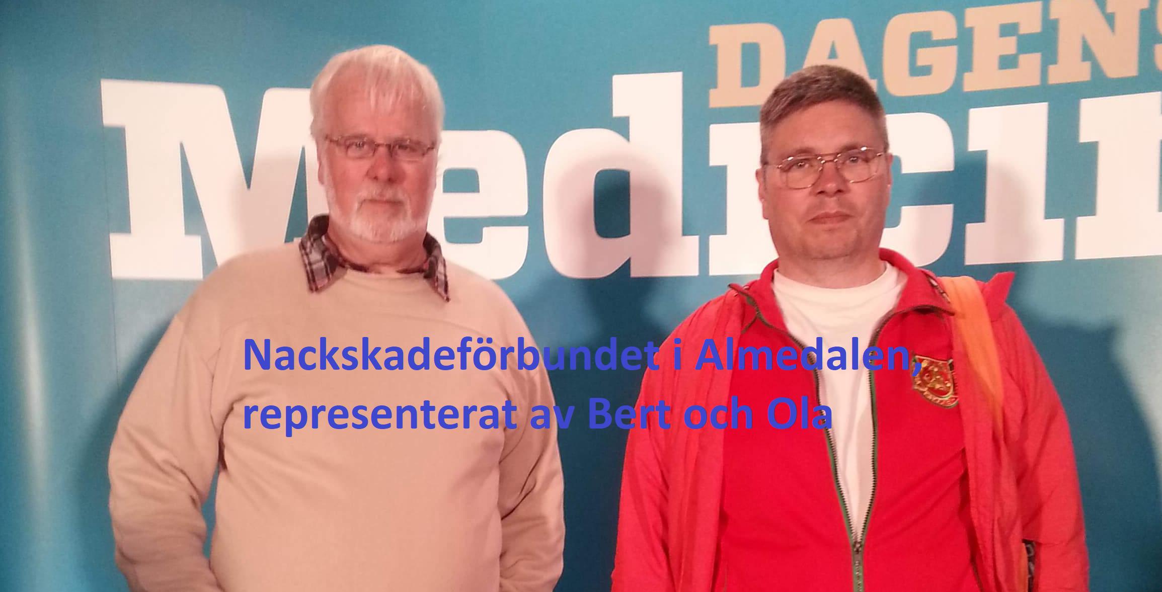 Nackskadeförbundet i Almedalen 2018